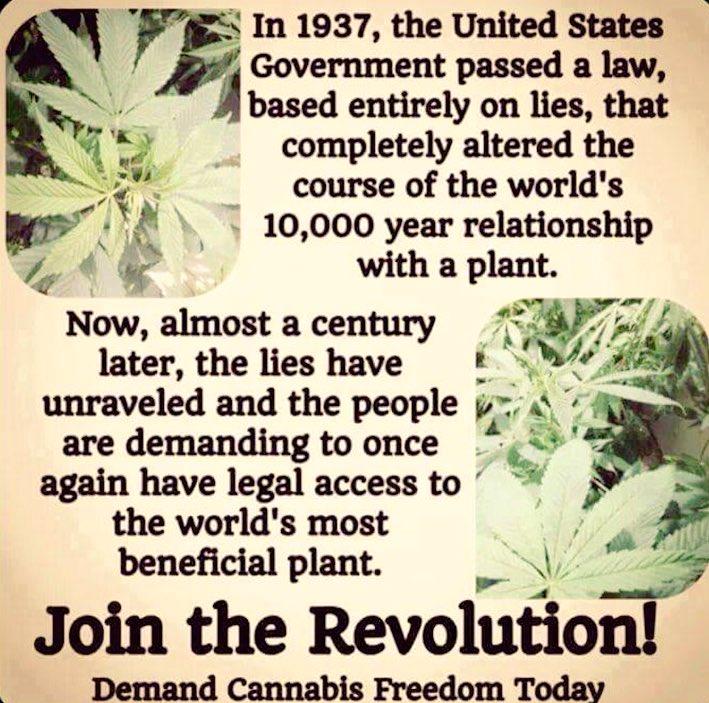 Join the revolution! 👍