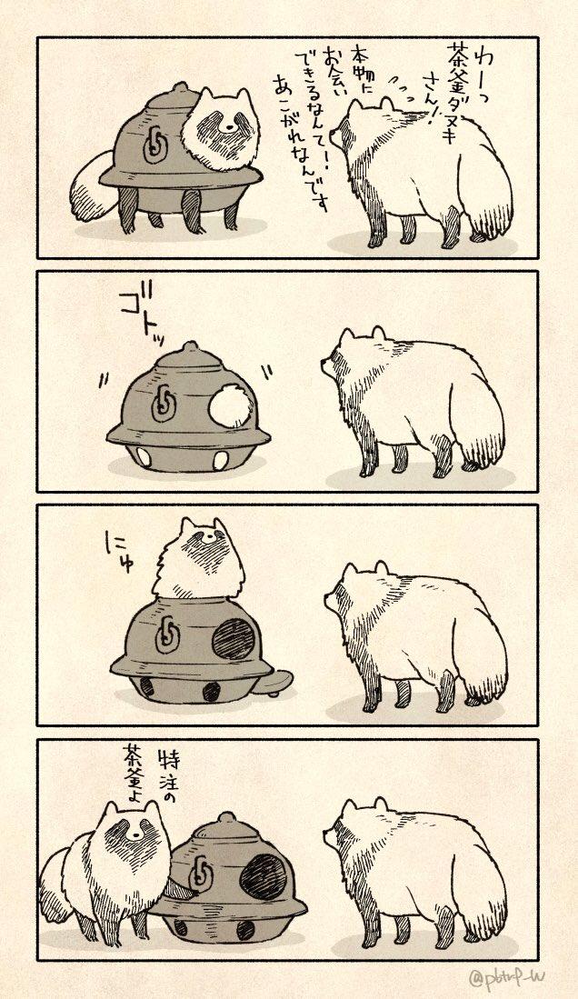 茶釜ダヌキさん