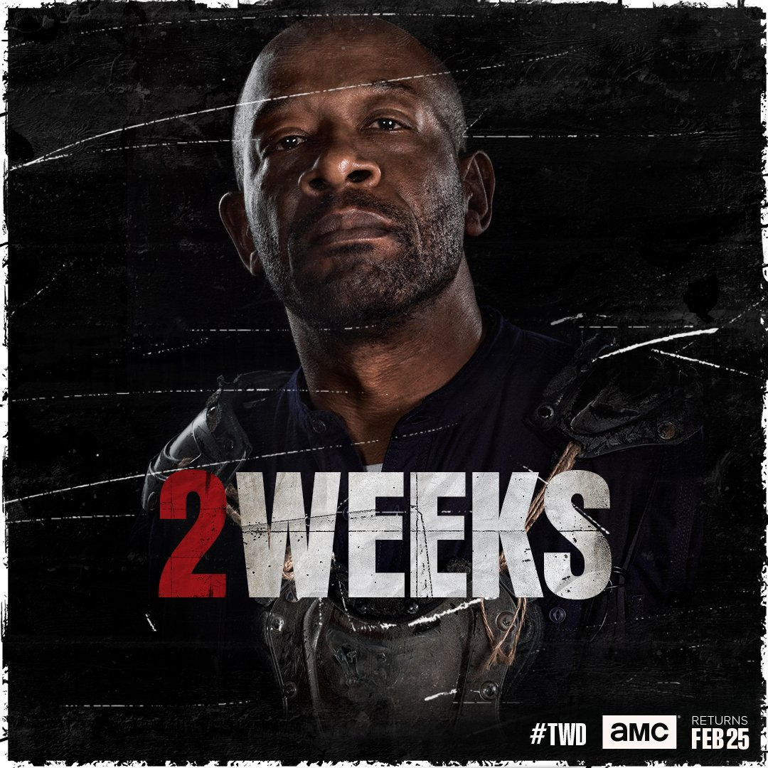 2 weeks left. Is the Kingdom ready for one last stand? #TWD