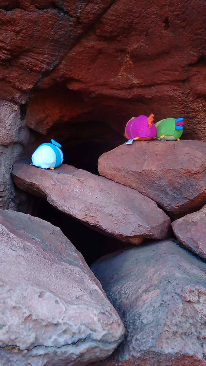 ドナ 「怖そうな洞窟だぁ…」 パン 「中に入りたいのか!?じゃあ行けよ!」...