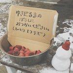 なんてかわいいアイデアだろう?w子供たちのためにそっと雪だるまの帽子(植木鉢)を置く優しい人!