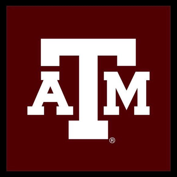 Image result for texas a&m