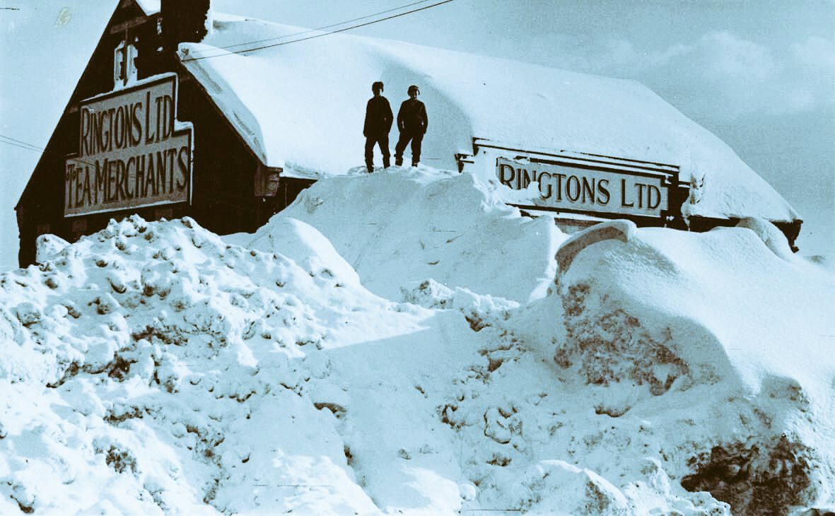 Ringtons ringtons on twimap as the beastfromtheeast bears down on us be sure your cupboards are well stocked with all your ringtons essentials if theyre not negle Choice Image