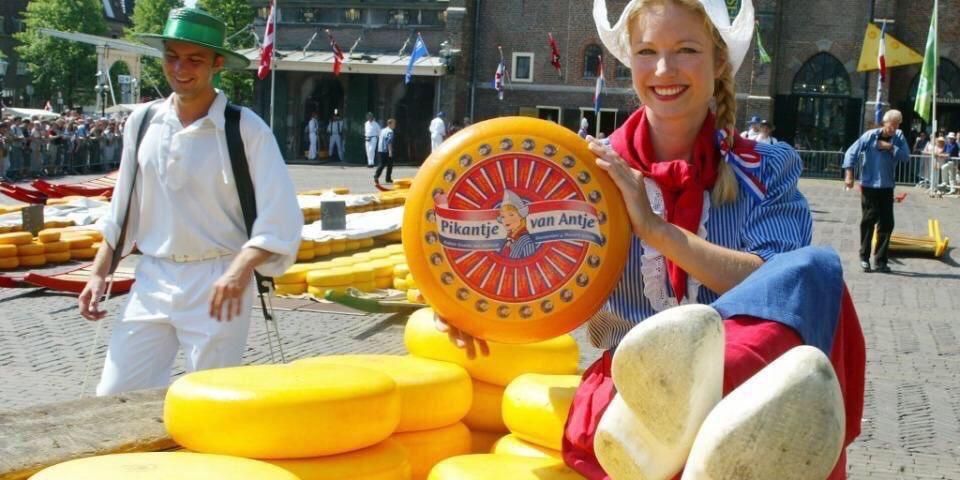 DW0JopKWkAI1kJA - Города, которые стоит посетить в Голландии
