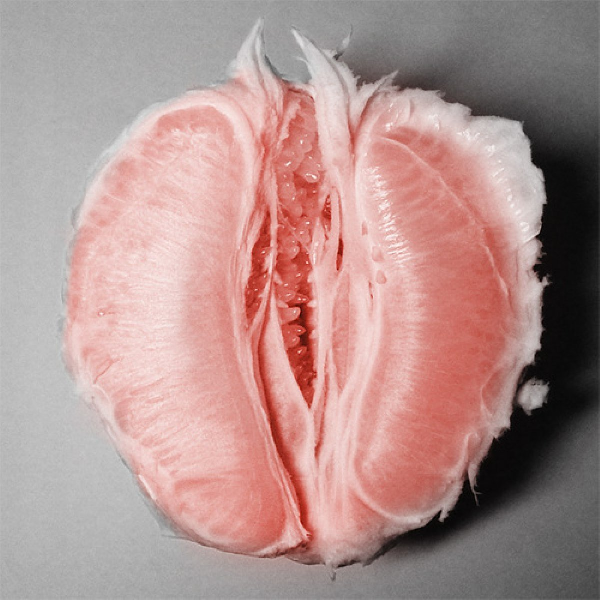 beautiful human vulva