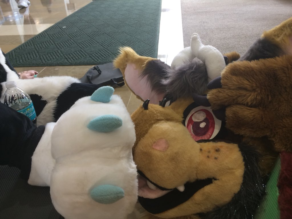 Jalen Folf Furality On Twitter We Called It Fursuit Porn