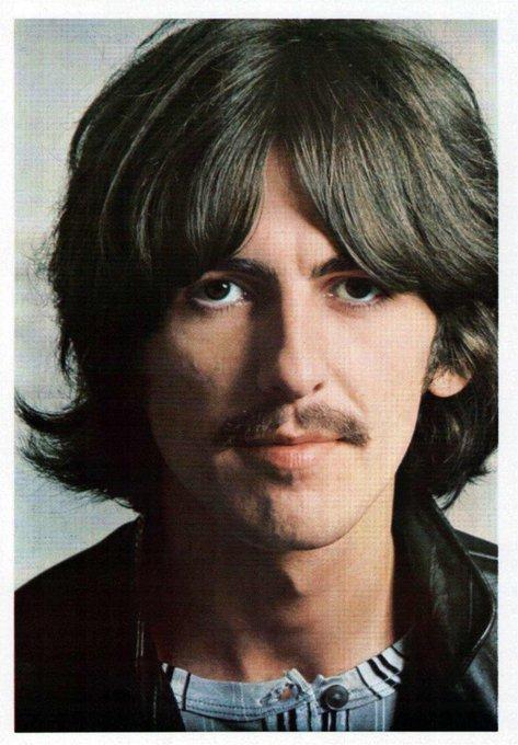 Something by The Beatles     Happy Birthday, George Harrison!