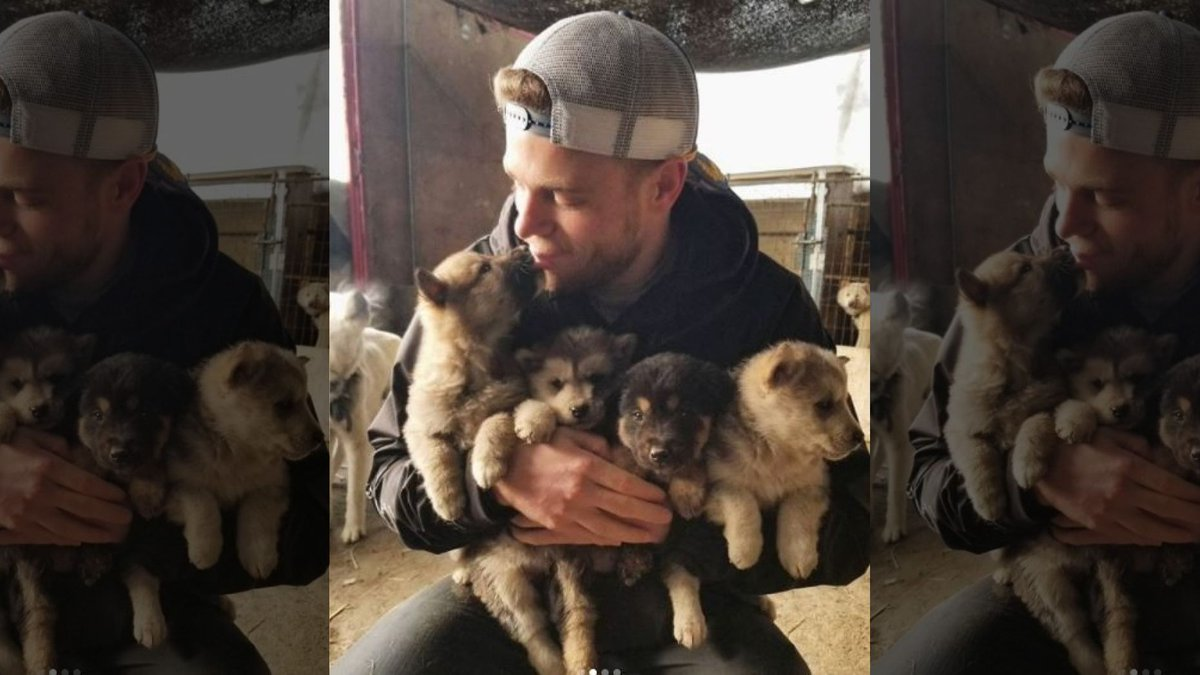 US Olympian Gus Kenworthy rescues 90 dogs from Korean dog meat farm https://t.co/pn1Yct5Ncj