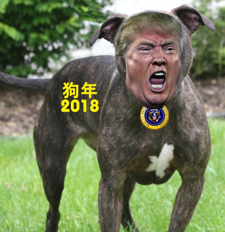 Year of the Dog 2018  狗年