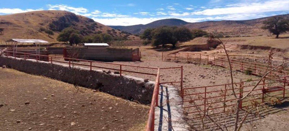#Aseguran cuatro ranchos más a César Duarte; en el interior había animales exóticos y de colección https://t.co/a9r4H9mglN