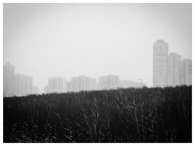Die Großstadt und das Birkenwäldchen. #Winter in #Moskau  #moscow #moscowcity #moscow_ig #moscowtime #moscowdays #moscowsky #Wohnmaschinen #Grau #dust https://t.co/14r624QEWw https://t.co/WtIMoXfC3y