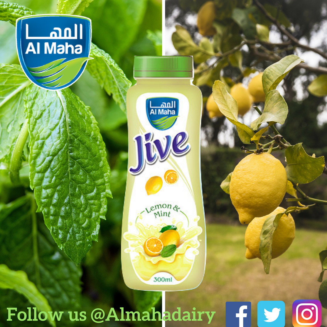 Almaha Dairy on Twitter:
