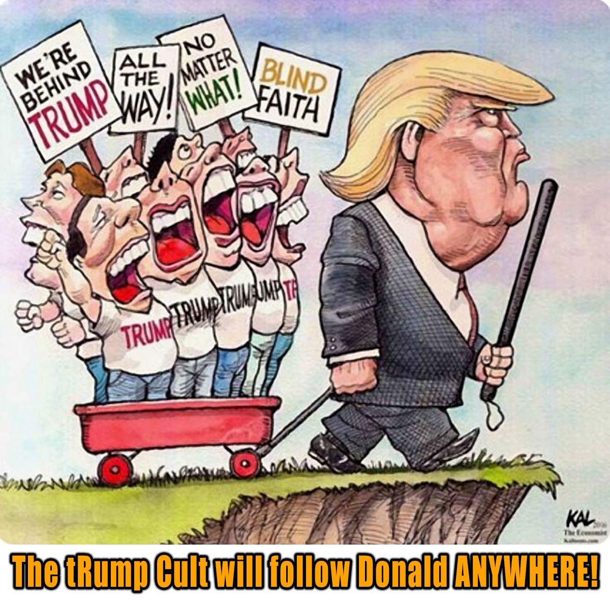 Image result for trump cult cartoon