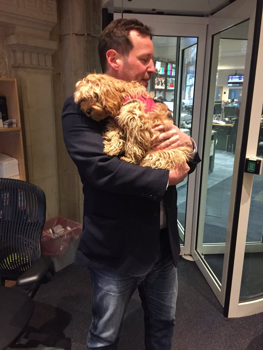 Delighted to say @edvaizey brought his dog with him for Brexit intv. Note to future guests - more hounds in newsroom pls.