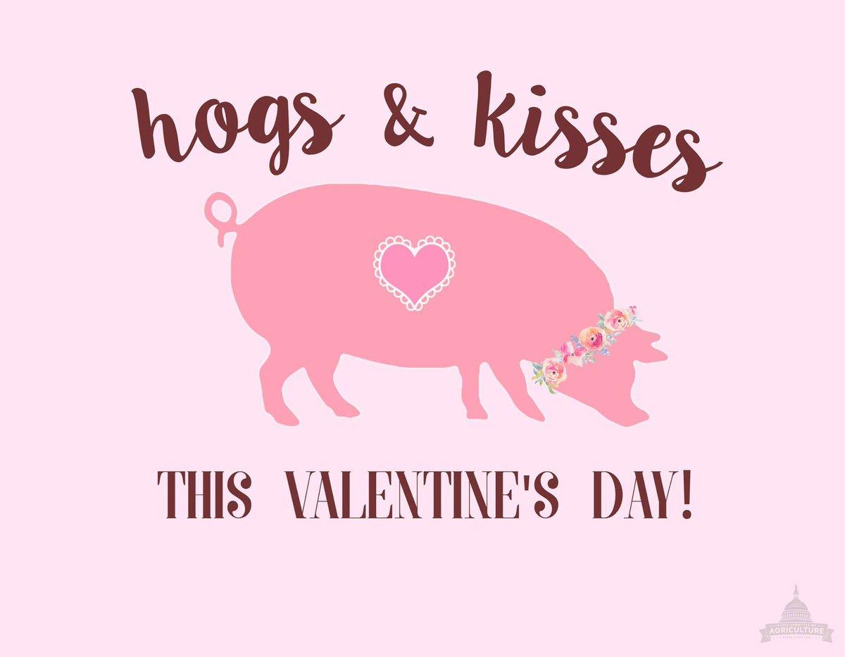 Happy Valentine's Day! #HouseAg https://...