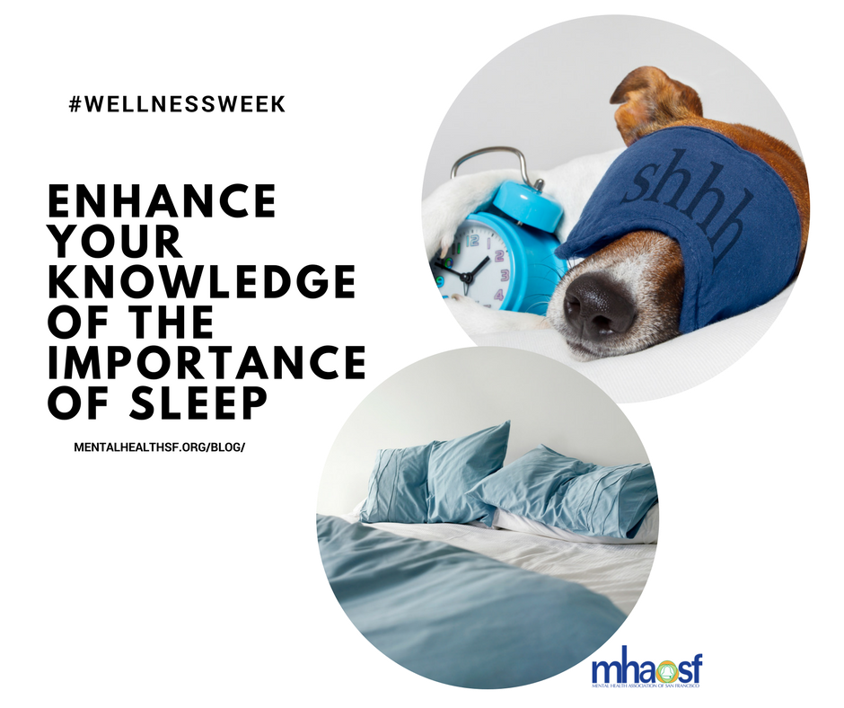 the importance of sleep to the body and mind