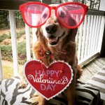 Is your #ValentinesDay outfit as good as this one? We hope your day is extra sweet! | Photo by callan_byars