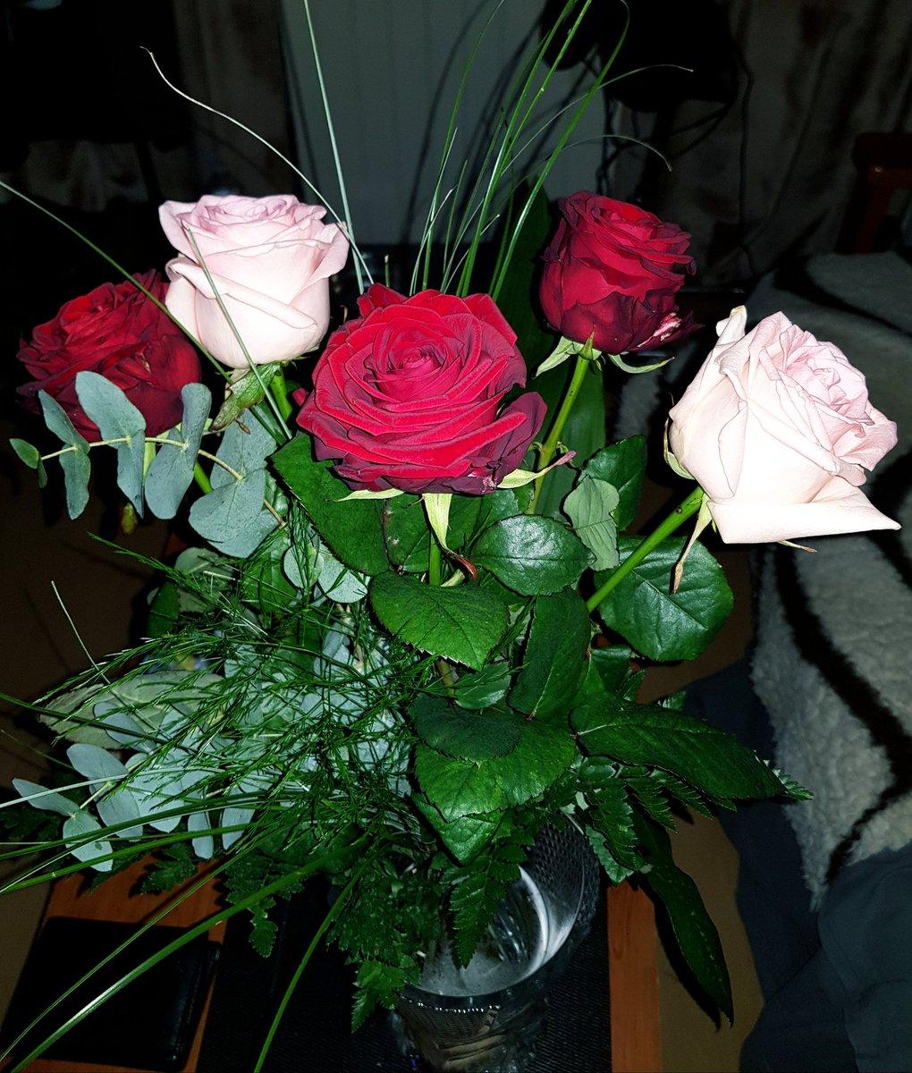 """Bouquet De Fleur Pour St Valentin passion dog loiret در توییتر """"joyeuse st valentin à tous"""
