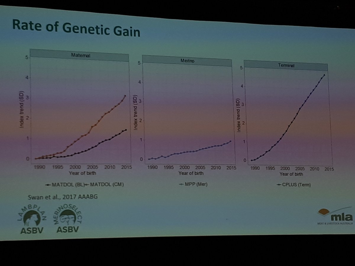 Genetic gains for Australian sheep industry presented at the World Congress Genetics Applied to Livestock Production, Auckland, NZ.Regards JK