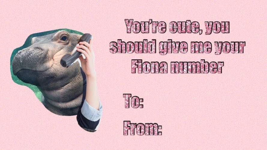 Valentines Day isn't complete without Fi...