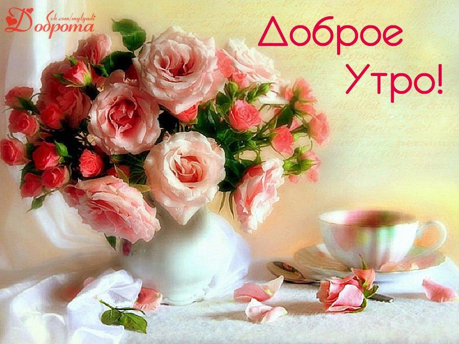 Доброе утро луиза открытки, розами для
