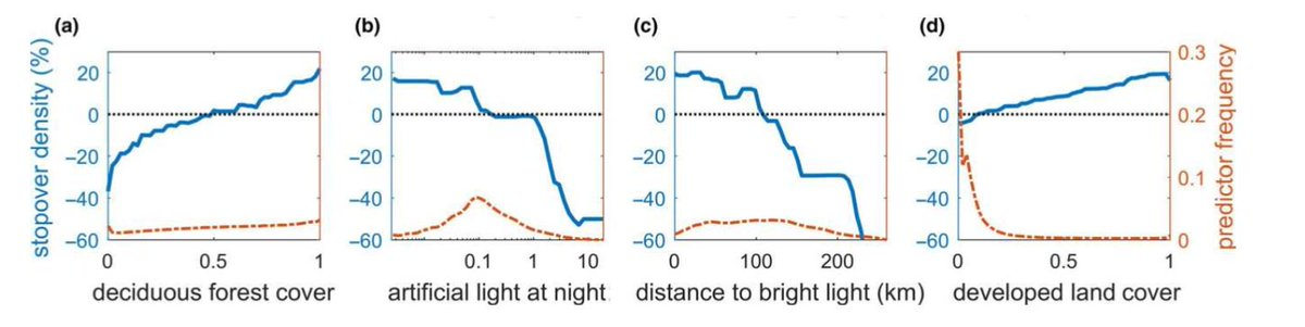 Weather radar measurements of nocturnal migrants in NE US shows they are attracted to artificially lit regions, but densities decrease within a few km of brightly lit sources, impeding selection for extensive forest habitat onlinelibrary.wiley.com/doi/10.1111/el…