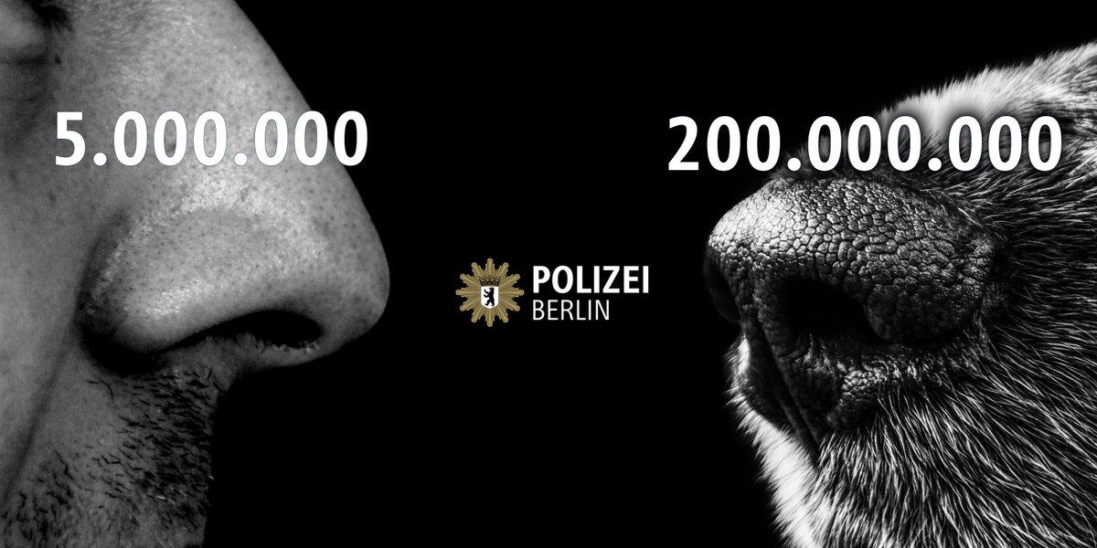 Polizei Berlin on Twitter: \