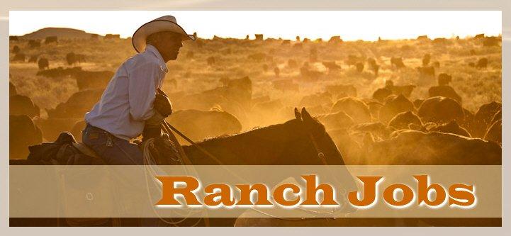 RanchPlex com (@ranchplex) | Twitter