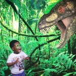 Take step back in history during Discover the Dinosaurs Time Trek at the @CobbGalleria. Go back to the Jurassic with realistic, prehistoric dinosaurs and other epic creatures starting February 24! https://t.co/rakm9jSOcb