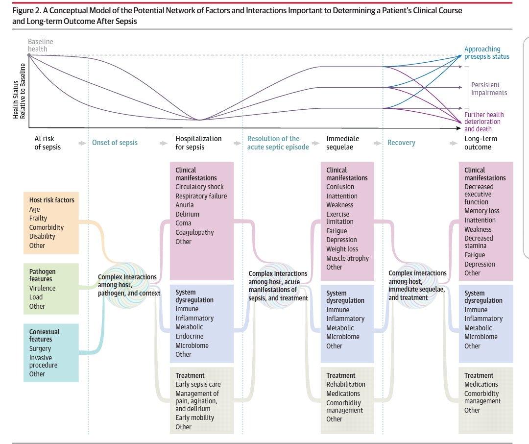download Analyse des besoins : La gestion de projet par étapes, 1e