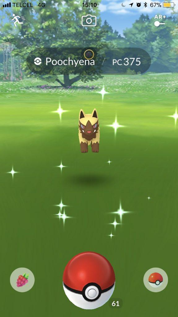 "Pokémon GO News on Twitter: ""Shiny Poochyena spotted in # ..."