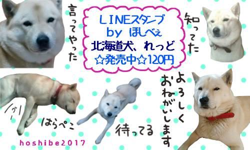 ☆スタンプ発売中☆ 『北海道犬、れっど』 https://t.co/CS9y1J...
