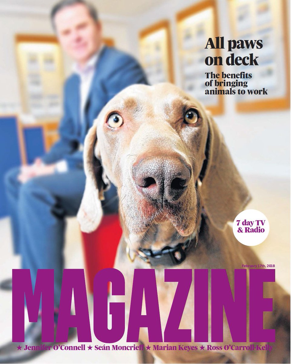 Ruff & ready @IrishTimesMag this wk: We meet people who bring their dogs, cats, even a parrot to work; our columnists have lots to say, plus travel, fashion, a 4-in-1 bread recipe, and a beautiful piece by @IzHayes on when to stop chasing a rainbow baby