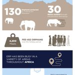 Some amazing achievements by @elephantsrhinos in 2017! #conservation #elephants #rhinos #charity