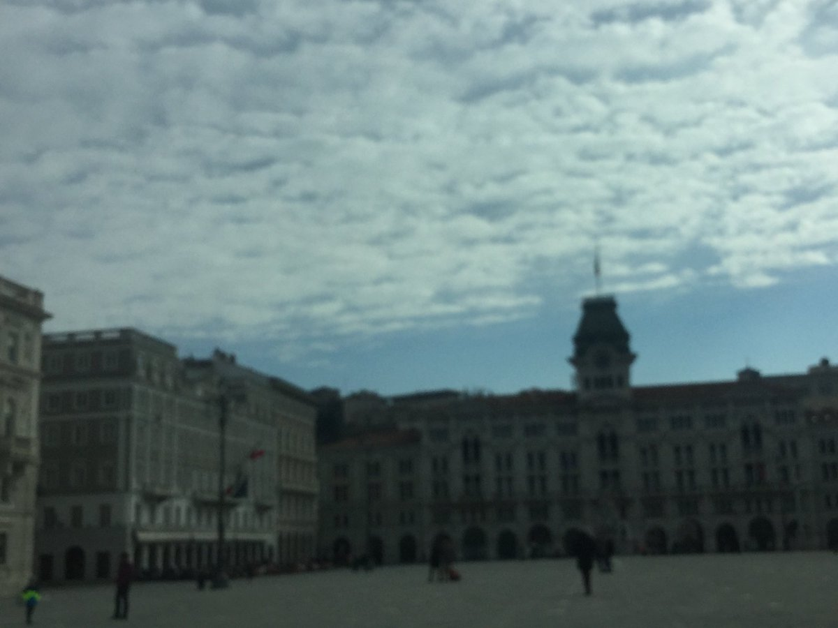 Oggi a #Trieste, fundraising borse di st...