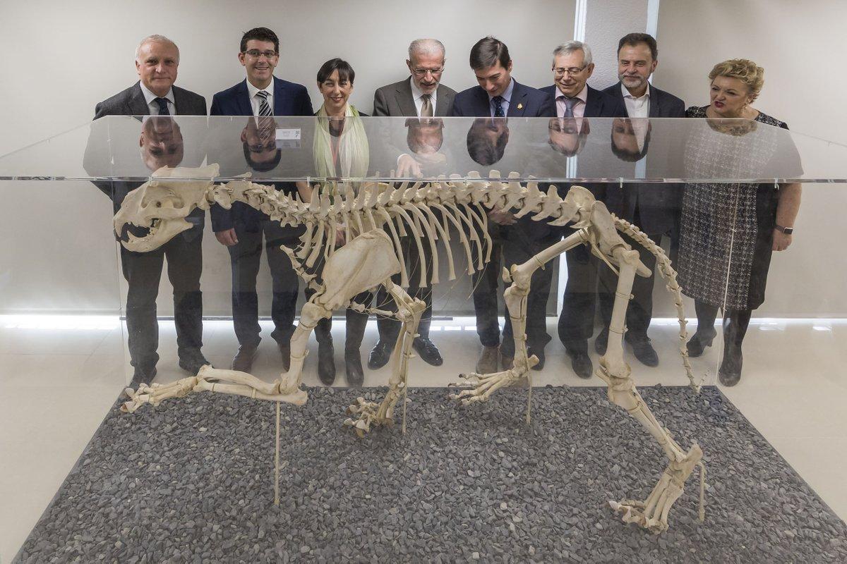 La Universitat de València inaugura el M...