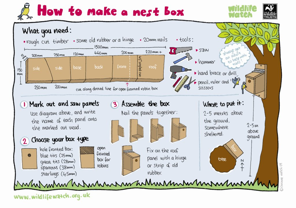 Its #NationalNestboxWeek! If youre looking for a fun family activity, why not try building your own nest box at home? Its so exciting to see garden birds setting up home in a house you built yourself.
