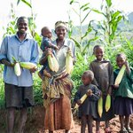 Image for the Tweet beginning: Investing in #smallholder farmers has