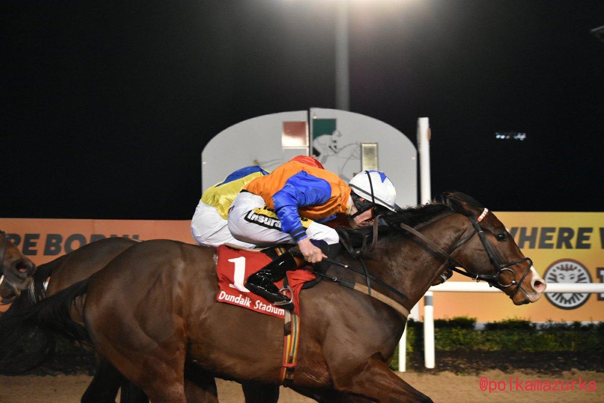 Image result for Plough Boy  horse dundalk garvan donnelly