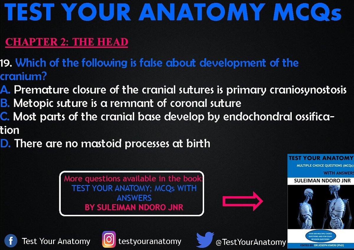 TEST YOUR ANATOMY (@TestYourAnatomy) | Twitter
