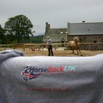 If anyone has any questions they would like to ask about what we do at @HorseBackUK please fire away. We won't the world to know how our veterans are benefiting by spending Three weeks on Royal Deeside with some amazing horses and some great people.