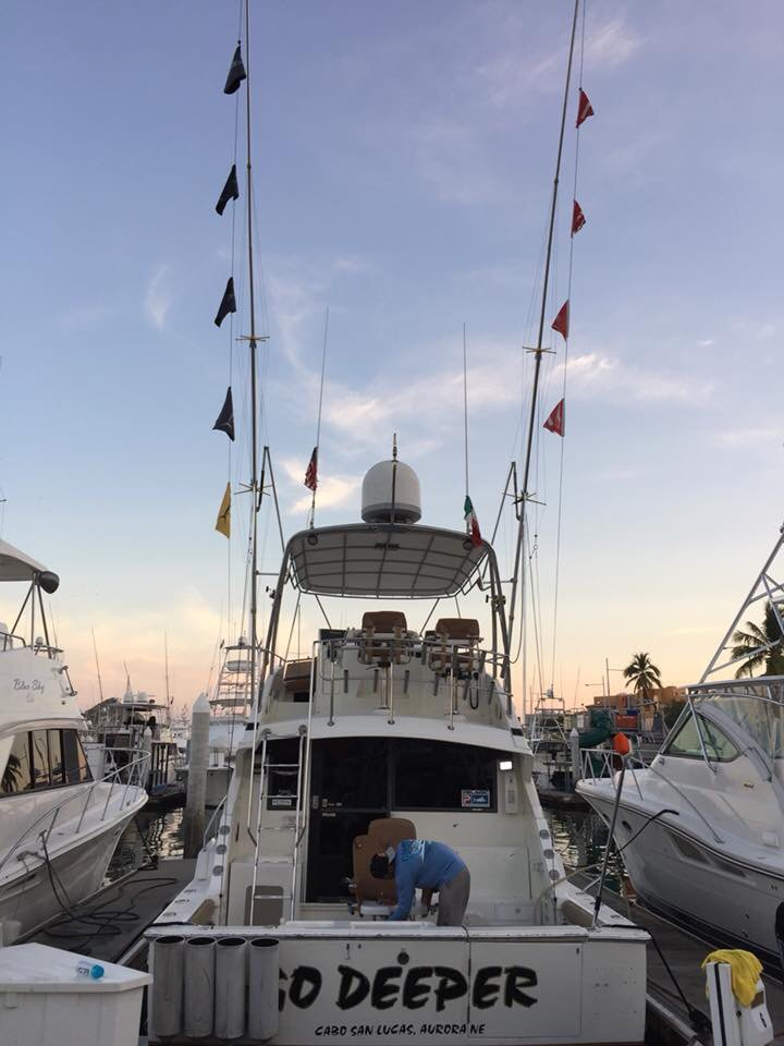 Cabo, MX - Go Deeper released 4 Striped Marlin.