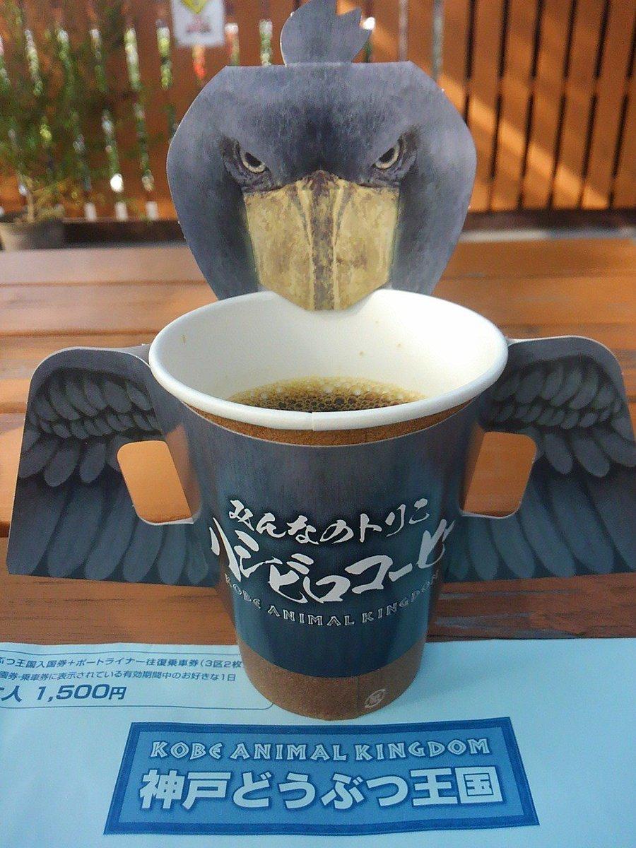 『ハシビロコーヒー』を注文したら想像の斜め上を行ったコーヒーが出てきた。 #神戸どうぶつ王国