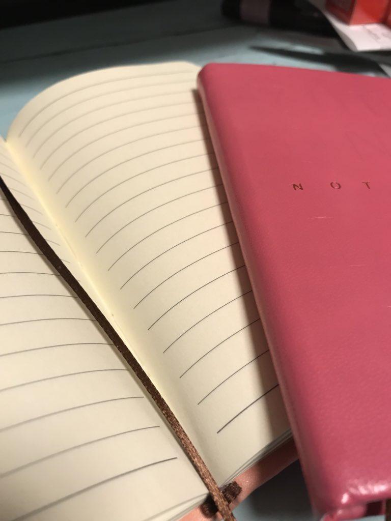 test ツイッターメディア - ダイソーのこのペンが意外と書きやすくてリピートした! ちょっとダイスキンっぽいけどゴムはなし カバーが可愛い?? 色も他にも茶色に黒 黒もかっこよかったな? 中身はA罫 方眼やと嬉しいんやけどな? #ダイソー https://t.co/L3oeP9VFZY