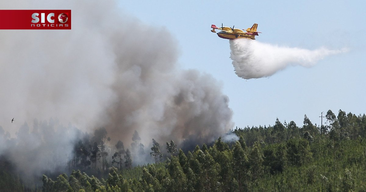 Ainda só estão garantidas 10 das 50 aeronaves de combate aos fogos https://t.co/RrEeMhglJL