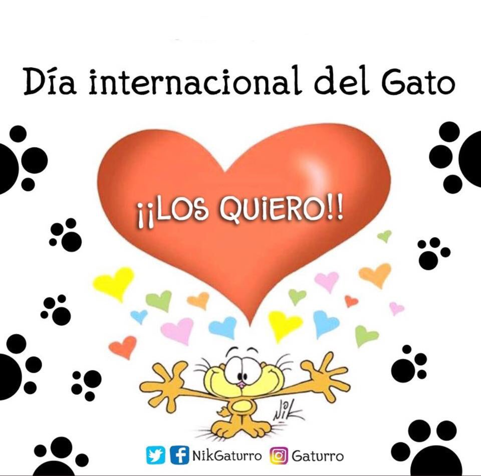 Feliz Día internacional del gato!!! Feli...
