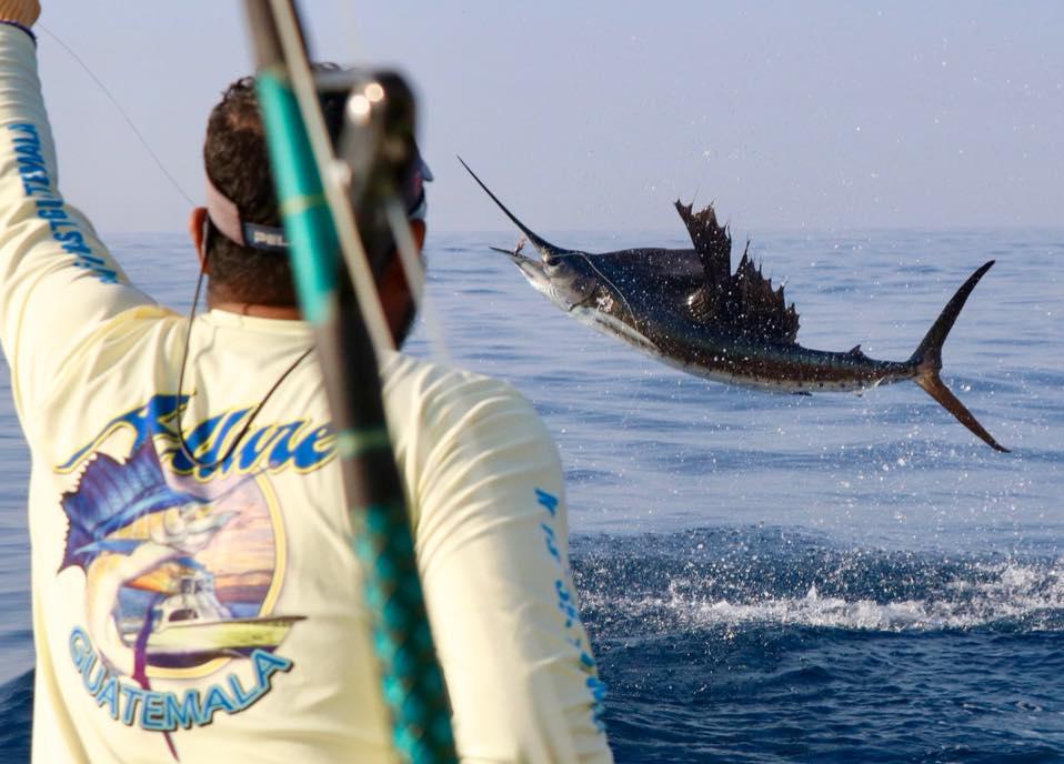 Guatemala - Allure II went 12-21 on Sailfish.
