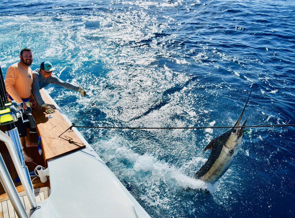 Los Suenos, CR - Blue Marlin on the Fa La Me.