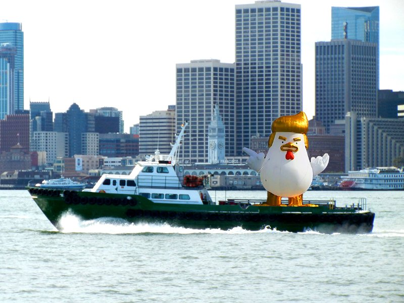 Giant inflatable Trump chicken cruising the Bay https://t.co/MOmS6Fh3Rr