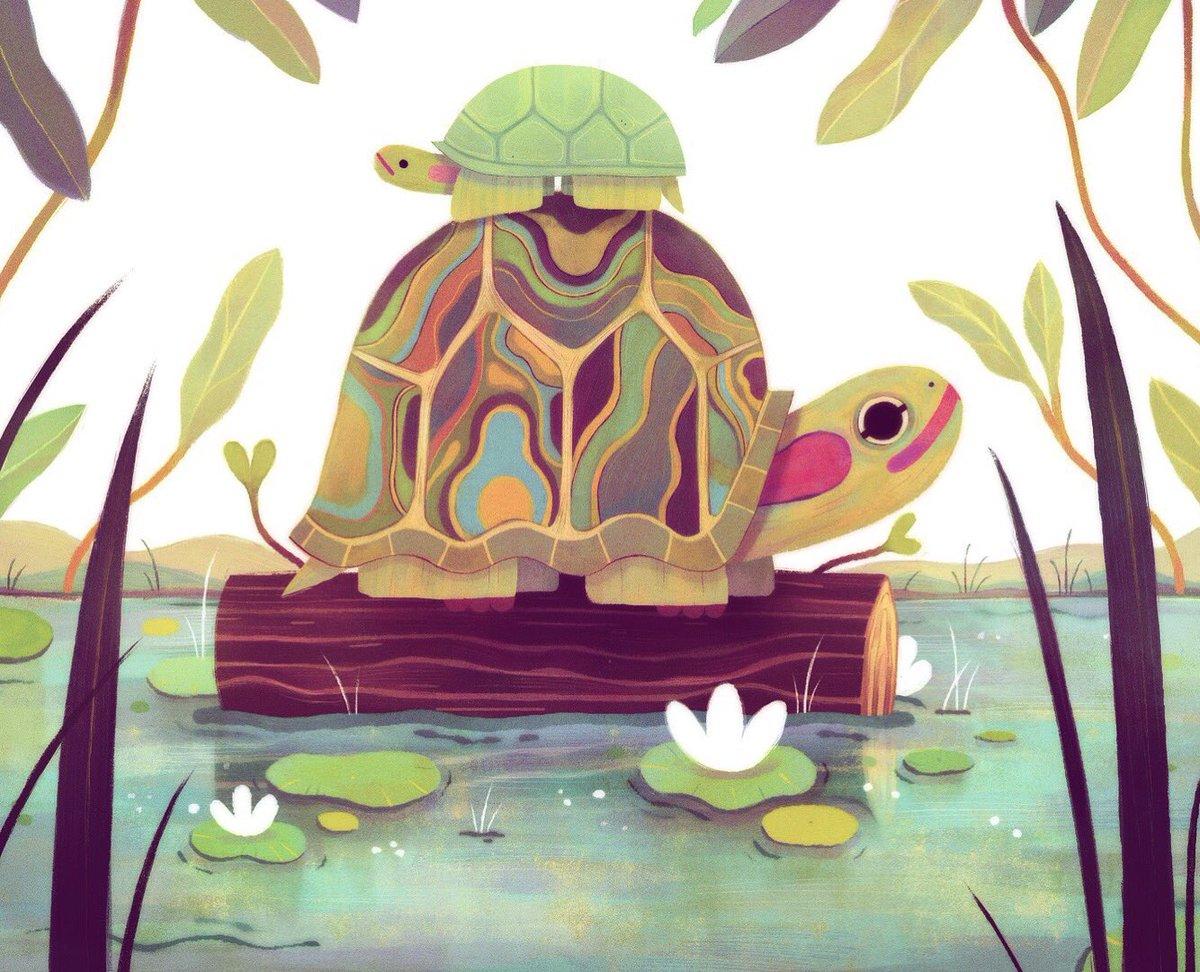 Couple o turtles 🐢🐢
